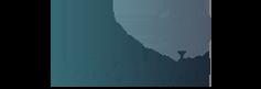 Essistance, webáruház készítés, webfejlesztés