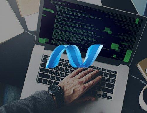 .Net fejlesztő