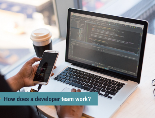 How does a developer team work?