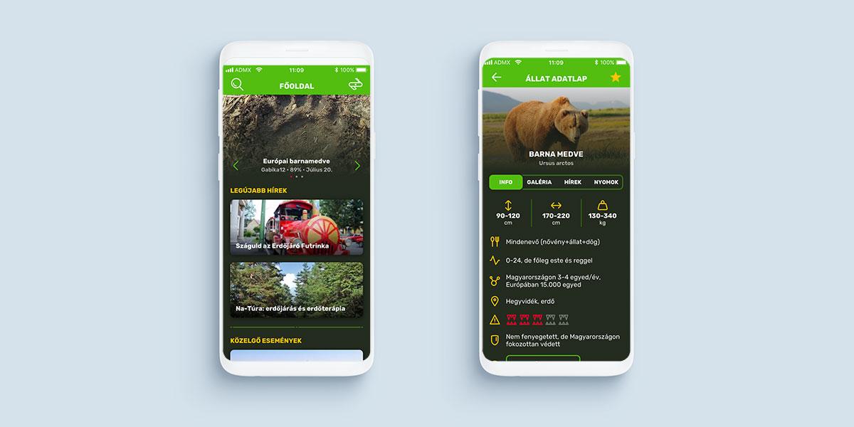 Nyomkereső webes és mobil alkalmazás